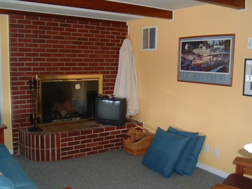 Alternate view of the downstairs living area & fireplace